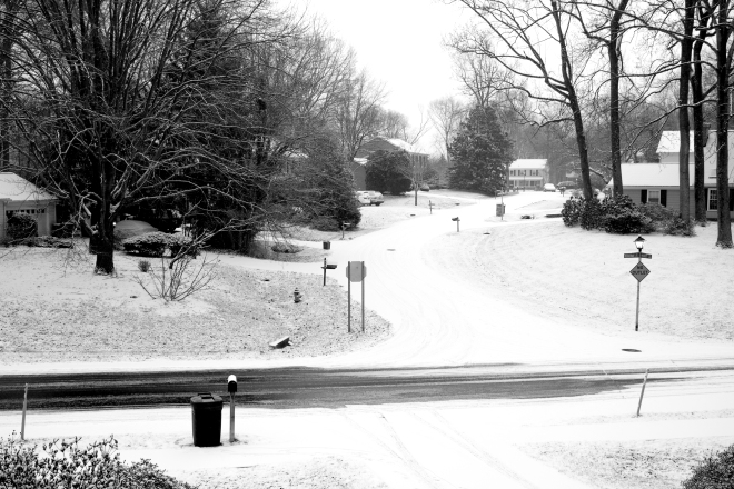 snow suburbia black and white
