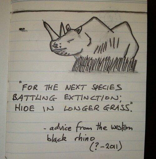Advice from Extinct Animals 1 – Western BlackRhino